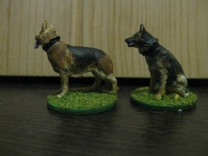 German-Shepherds